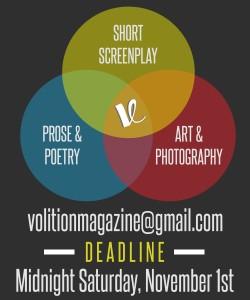 Volition Fall 2014 Ad (2)